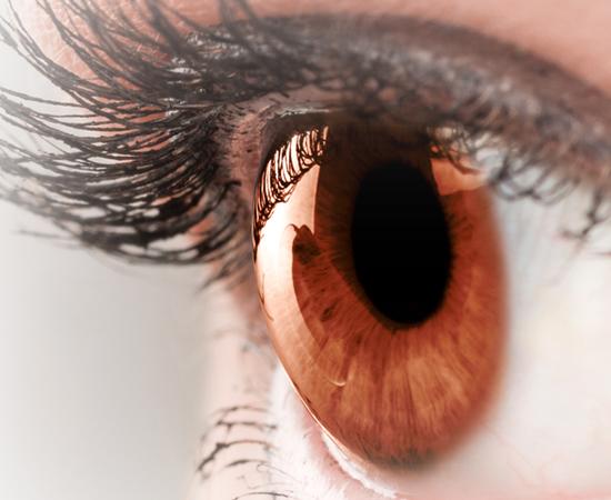 córnea oftalmocenter